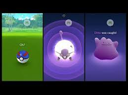 how to catch ditto 2021